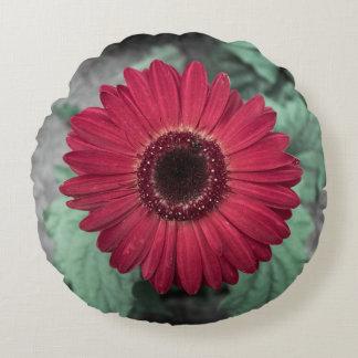 Maroon color daisy round cushion
