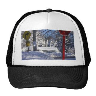Marple - Snowstorm Cap