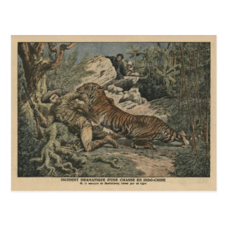 Marquis of Barthelemy wounded by a tiger Postcard
