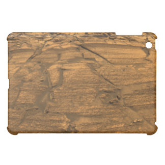 Mars Exploration Rover Opportunity iPad Mini Cases