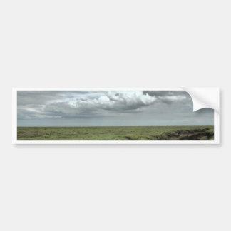 Marsh Bumper Sticker