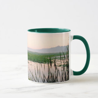 Marsh Wetland Sunrise