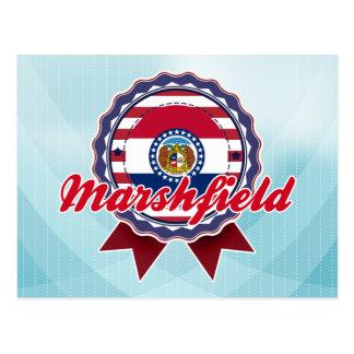 Marshfield, MO Postcard