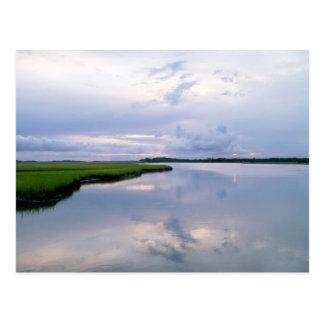 Marshland Sunset Postcard