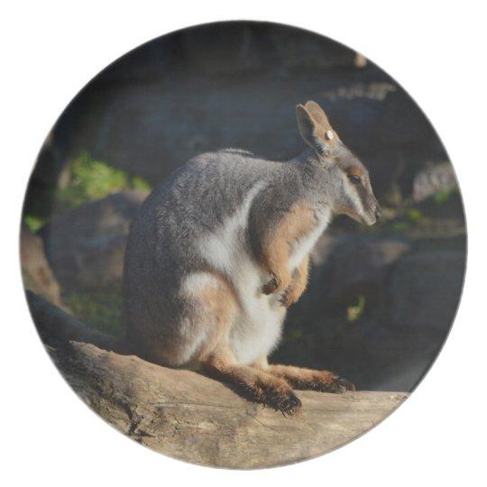 Marsupial Plate