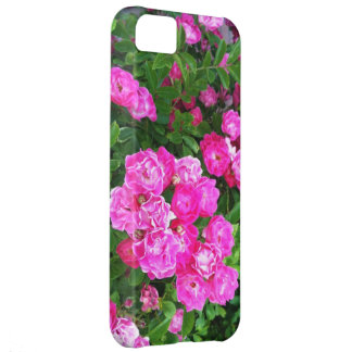Martha s Vineyard Roses Other Worldly Pink iPhone 5C Cases