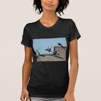 Marthas Vineyard 48 Tshirts