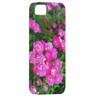 Martha's Vineyard Roses Other Worldly Pink iPhone 5 Case