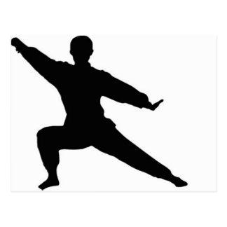 Martial Artist Postcard
