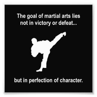 Martial Arts Character Photo