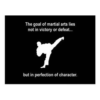 Martial Arts Character Postcard
