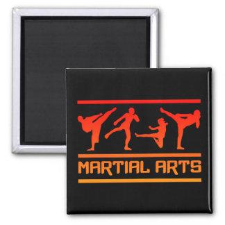Martial Arts magnet