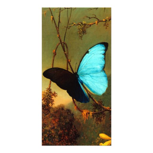 Martin Johnson Heade Blue Morpho Butterfly Photo Greeting Card