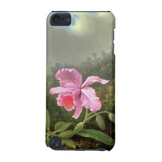 Martin Johnson Heade Orchid And Hummingbirds iPod Touch (5th Generation) Covers