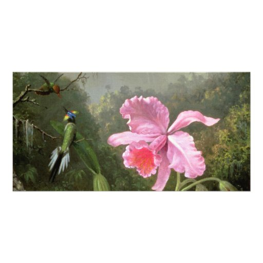 Martin Johnson Heade Orchid And Hummingbirds Photo Greeting Card