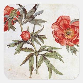 Martin Schongauer: Study of Peonies Stickers