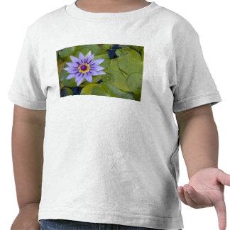 Martinique, French Antilles, West Indies, Blue T Shirt