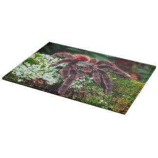 Martinique Tree Spider, Avicularia versicolor, Cutting Board