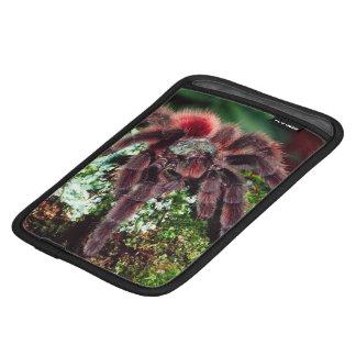 Martinique Tree Spider, Avicularia versicolor, iPad Mini Sleeve