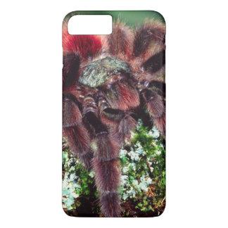 Martinique Tree Spider, Avicularia versicolor, iPhone 8 Plus/7 Plus Case