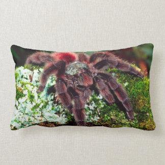 Martinique Tree Spider, Avicularia versicolor, Lumbar Pillow