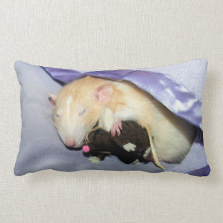Marty Sleeping with RatTeddy 16x16 Pillow