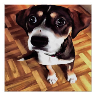 Marty The Soulful Eyed Dog Poster