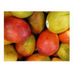 Marvellous mangoes post card
