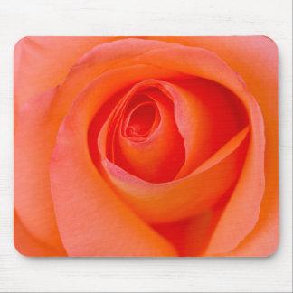 Marvelous Orange Rose Bud Mouse Pad