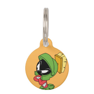 MARVIN THE MARTIAN™ Annoyed Pet Name Tags