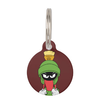 MARVIN THE MARTIAN™ Upset Pet ID Tag