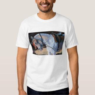Marwari Horse Rajasthan 2010 T-shirts