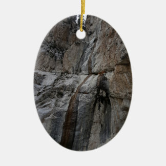 Mary Jane Falls Mount Charleston NV Christmas Ornament