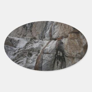 Mary Jane Falls Mount Charleston NV Oval Sticker