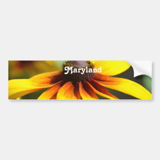 Maryland Black Eyed Susan Bumper Stickers