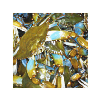 Maryland Blue Crabs Stretched Canvas Print