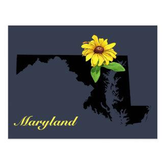 Maryland Silhouette Postcard