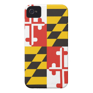 maryland usa state flag case united america