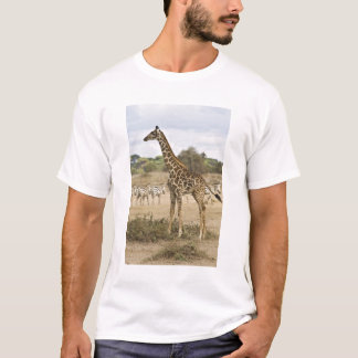 Masai Giraffe and Common Zebra at Amboseli NP, T-Shirt