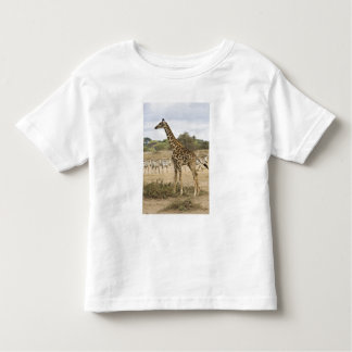 Masai Giraffe and Common Zebra at Amboseli NP, Toddler T-Shirt