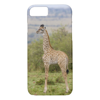 Masai Giraffe (Giraffa camelopardalis 2 iPhone 8/7 Case