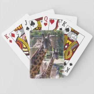 Masai Giraffe playing cards