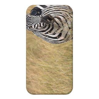 Masai Mara, Kenya Cases For iPhone 4