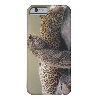 Masai Mara National Reserve 2 Barely There iPhone 6 Case