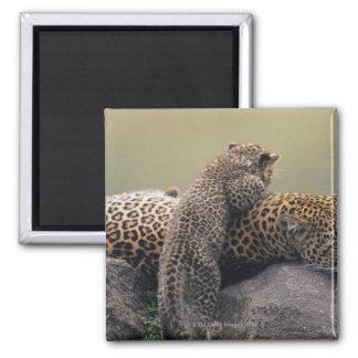 Masai Mara National Reserve 2 Square Magnet