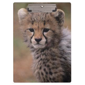 Masai Mara National Reserve Clipboard