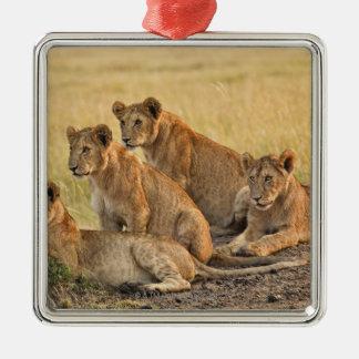 Masai Mara National Reserve, Kenya, Jul 2005 Christmas Ornament