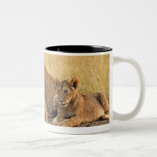 Masai Mara National Reserve, Kenya, Jul 2005 Two-Tone Coffee Mug