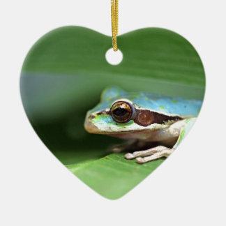 Masked puddle frog ceramic heart decoration