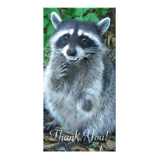 Masket Bandit Raccoon Stands on Hind Feet Personalised Photo Card